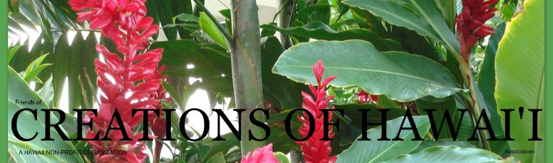 CREATIONS OF HAWAI'I - Friends of